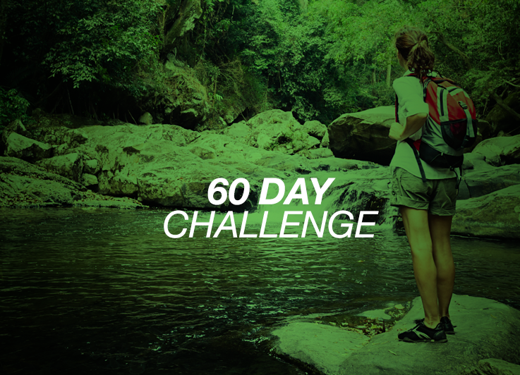60day